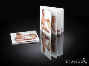 Vain 10x10 cm kokoinen Minikirja sopii hyvin käsilaukkuun tai vaikka taskuun. Koska kirja kulkee helposti mukana, siitä on kiva sopivassa tilanteessa näyttää oman lapsen tai lapsenlapsen kauniita valokuvia.